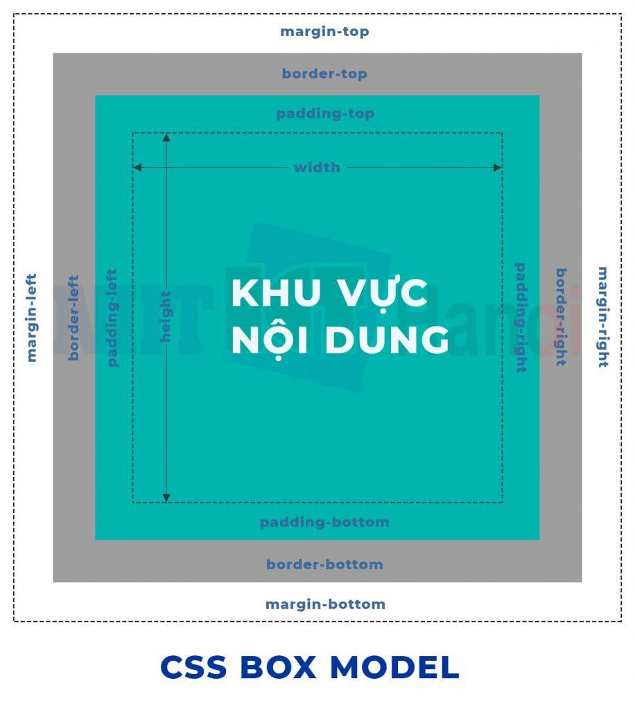 Minh họa CSS Box Model trong CSS
